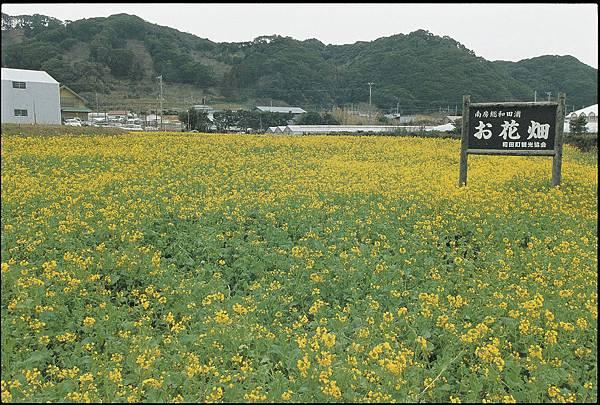 etoko_00658