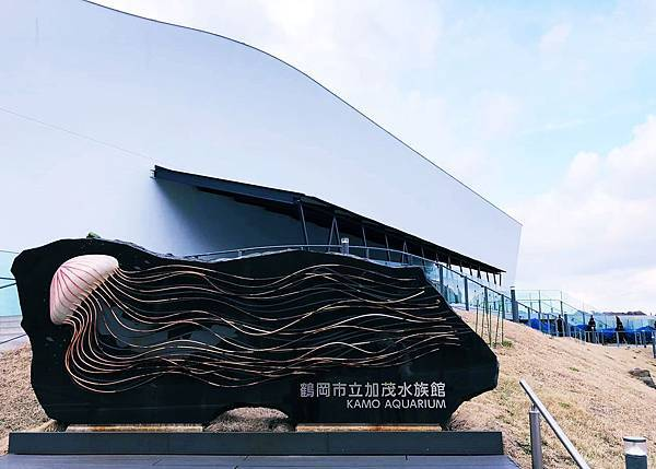 水族館 加茂