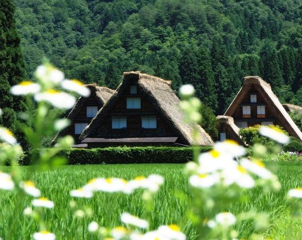2-28-gassho-summer.jpg