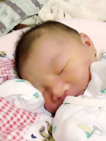 剛出生一天的林小妞