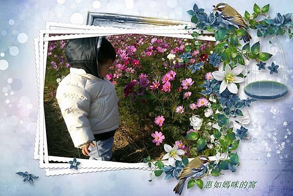 DSC_0146_副本