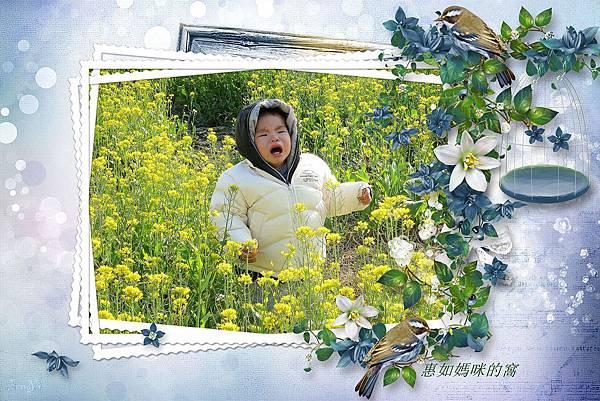 IMG_7929_副本