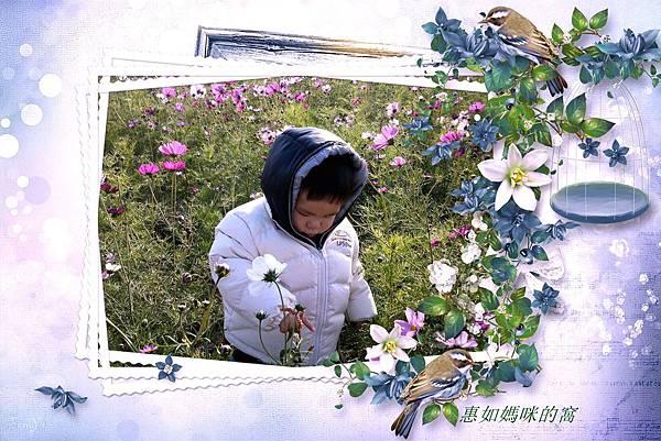 DSC_0145_副本