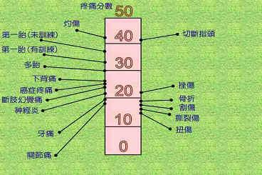 genera2.jpg