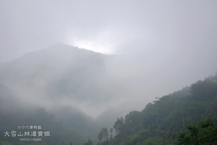 大雪山林道