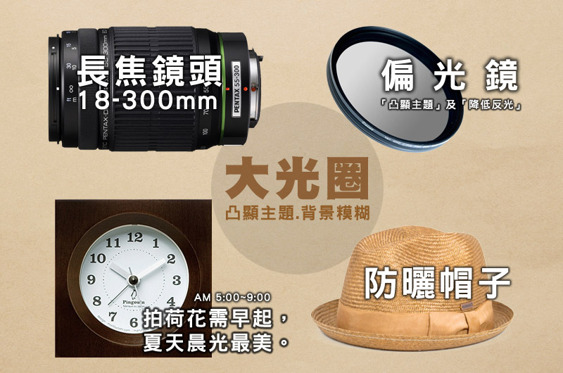 2014初夏賞荷花私房景點.秘境