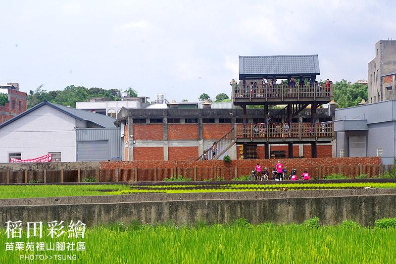 苗栗苑裡山腳社區彩繪稻田