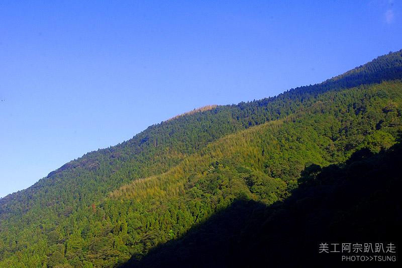 大雪山國家森林遊樂區