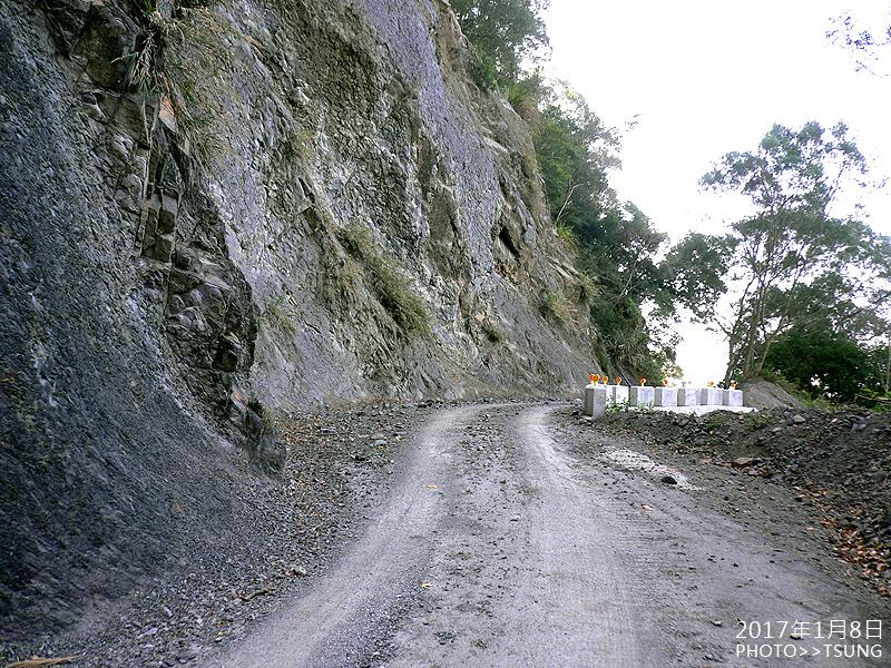 白毛山林道