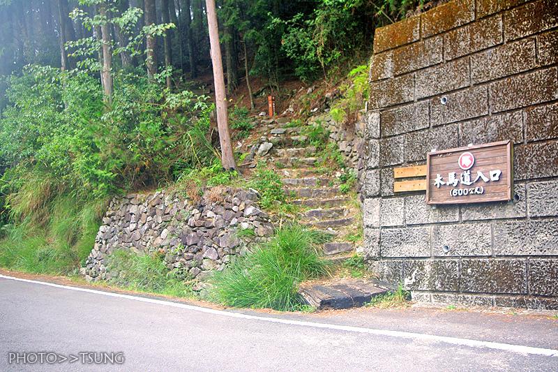 大雪山國家森林遊樂區【木馬道步道
