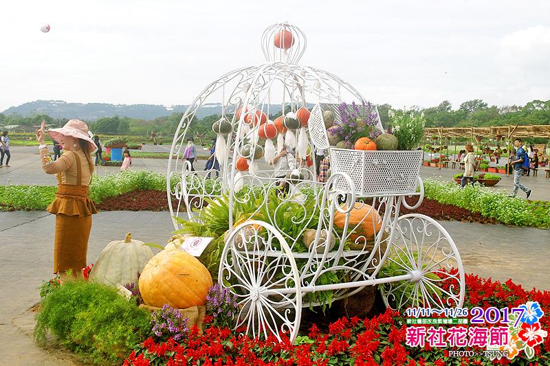 2017新社花海節