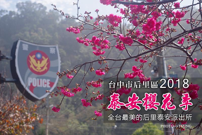 「【2018台中賞櫻】」的圖片搜尋結果