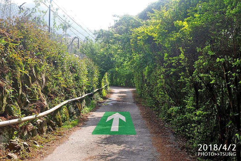 馬崙山登山口路線