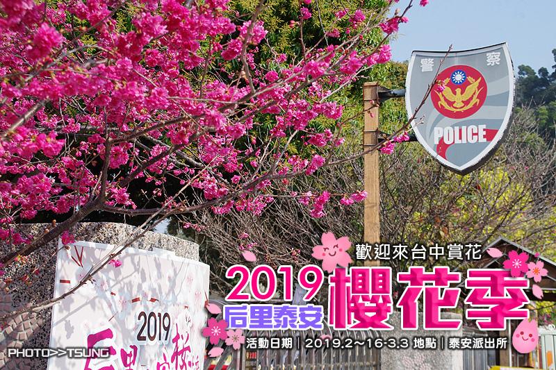 2019泰安櫻花季