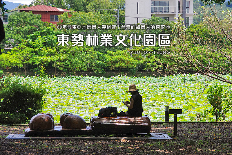台中市東勢區林業文化園區/台灣面績最大的荷花池