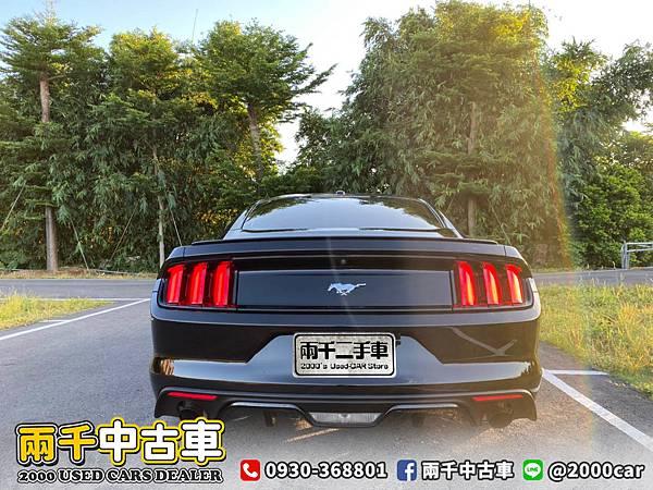 17野馬_200921_3.jpg