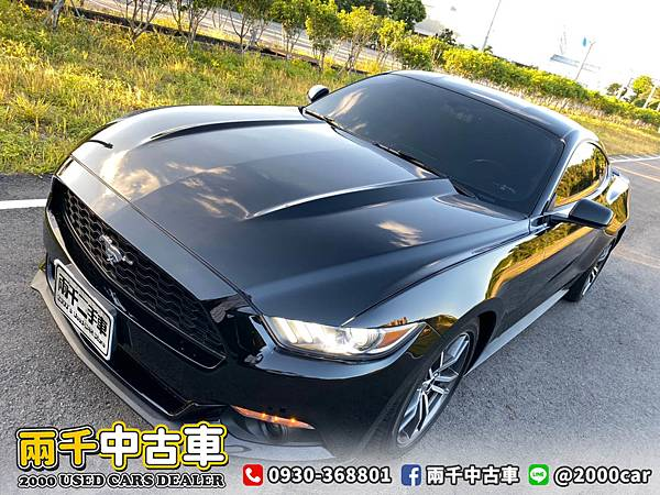 17野馬_200921_7.jpg