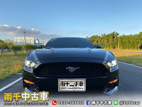 17野馬_200921_8.jpg