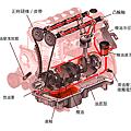 F00ECDC5-CA50-4B8A-AB39-6B40CD541E85.png