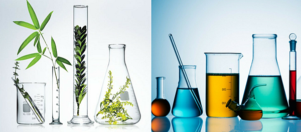 Natural_vs._Synthetic_1_1024x.png