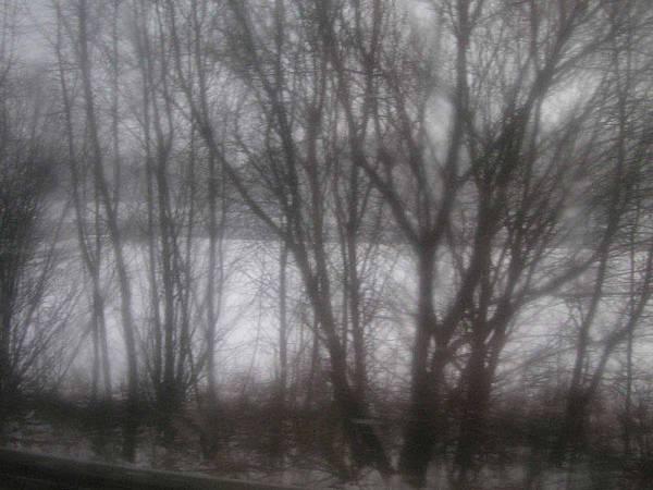 開始飄起雪來了