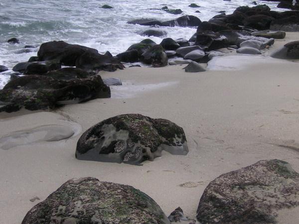 美麗的 La Jolla Beach