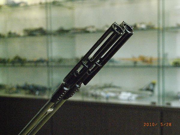 RIMG1698.JPG