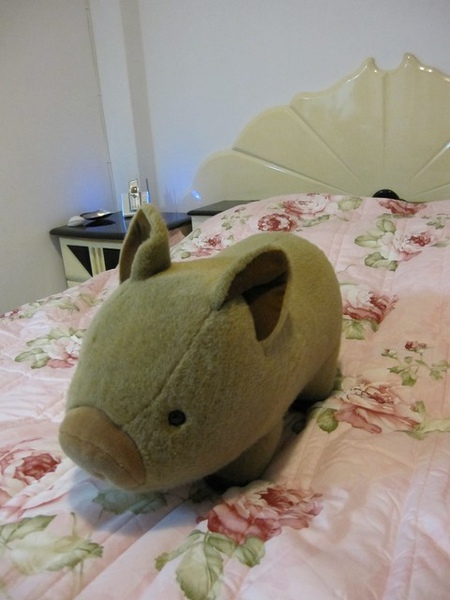 床和小豬豬