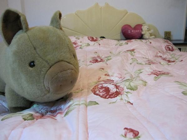 床舖和娃娃