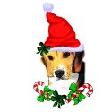 beagle_christmas_gifts_ornament_photosculpture-p153714114580675525qif5_125.jpg
