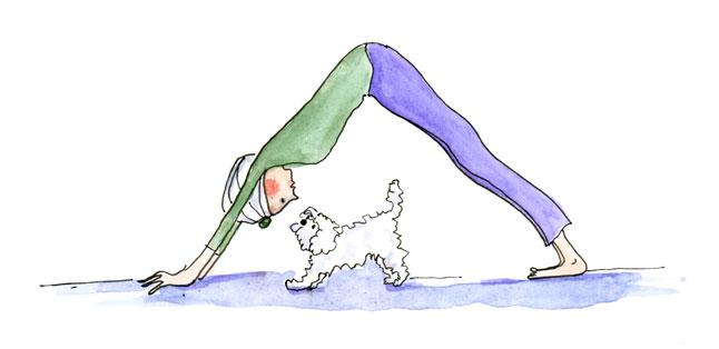 yoga-dog.jpg