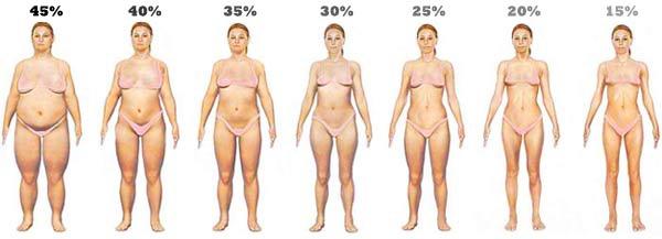 美肌博士4D馬甲電波瘦身健身減肥減脂線條肌肉脂肪局部胖緊實身材 (5).jpg