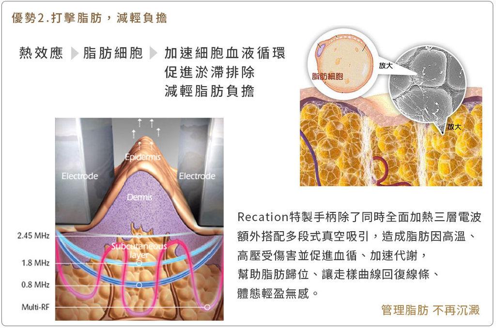 美肌博士Recation4D馬甲電波緊實身材 05.jpg