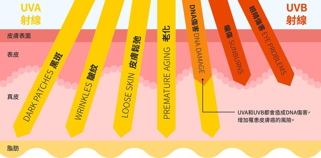 PicoSure755皮秒雷射蜂巢式聚焦陣列透鏡蜂巢透鏡皮秒雷射蜂巢皮秒雷射雀斑曬斑除斑痘疤毛孔細紋防曬紫外線抗UV02.jpg