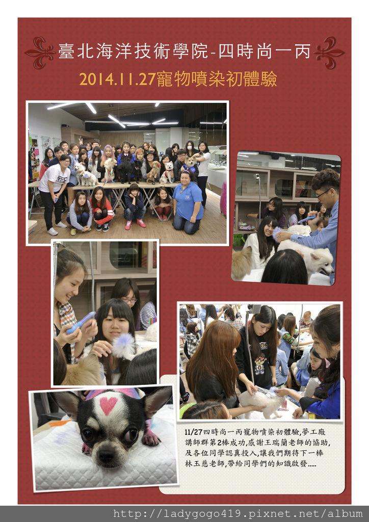 11/27臺北海洋技術學院 四時尚一丙 寵物染色課程