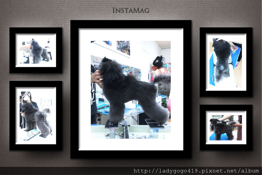 相片 2015-11-6 20 09 16