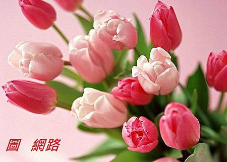 yu-jin-xiang-1.1.jpg