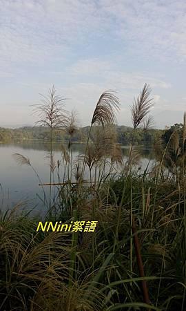 峨眉湖等1051120 190.1.jpg