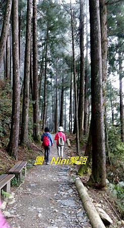 圳堤畫展觀霧1060511 405.1.jpg