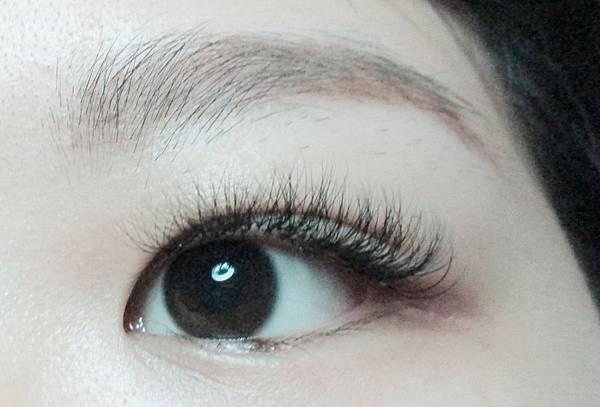 鳳眼美睫樣式.jpg