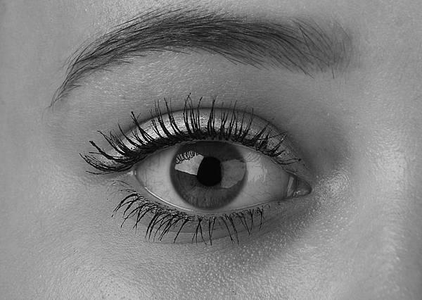 標準眼型接睫毛款式.jpg