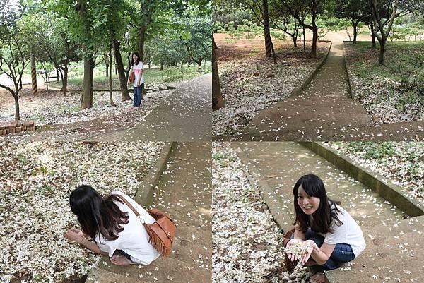 仁和步道-2.jpg