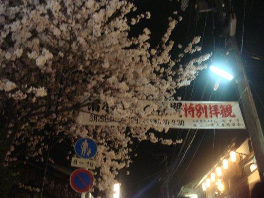 清水寺著名的賞夜櫻
