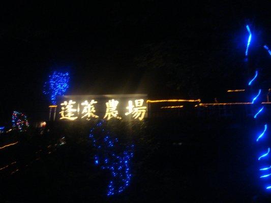 晚上看成千上百的瑩火蟲,一閃一閃好美唷
