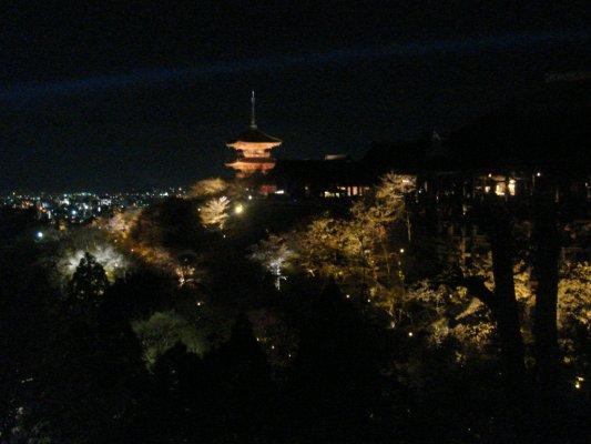 清水寺夜櫻