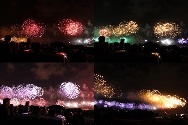 2011跨年大佳河濱-4.jpg