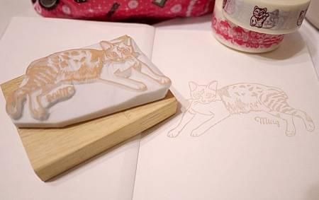 柔軟條紋貓