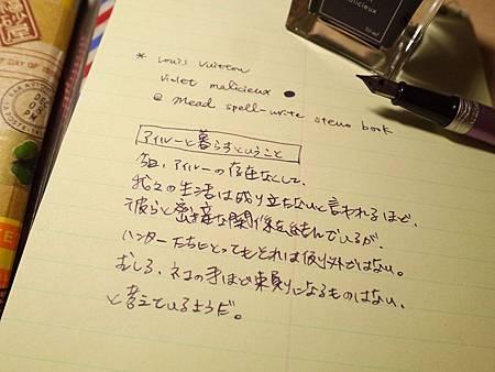Mead spell-write steno book