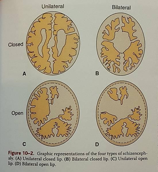 218-9.jpg