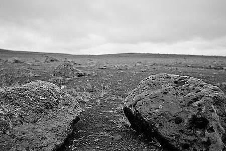 work_6356754_1_flat,550x550,075,f_volcanic-desert-black-lava-rock.jpg